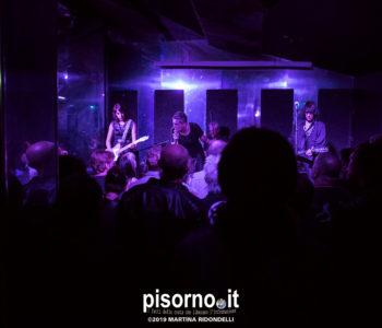 Caracol Pisa